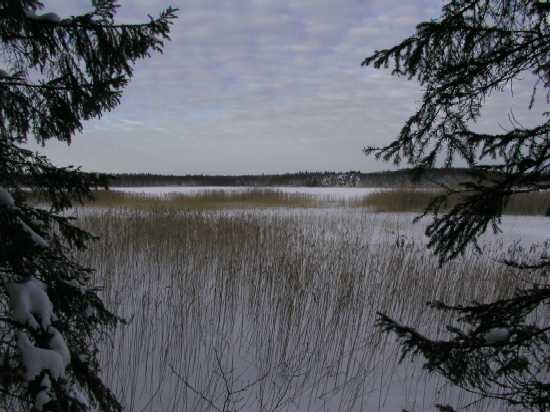 Fibysjön jan 2002